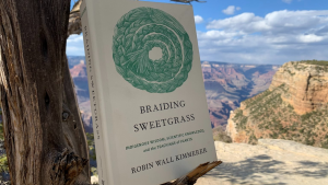 Image of the book, Braiding Sweetgrass